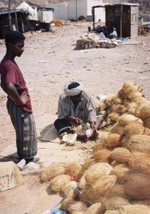 Kokosnusshändler in Jemen © Horst Hahn
