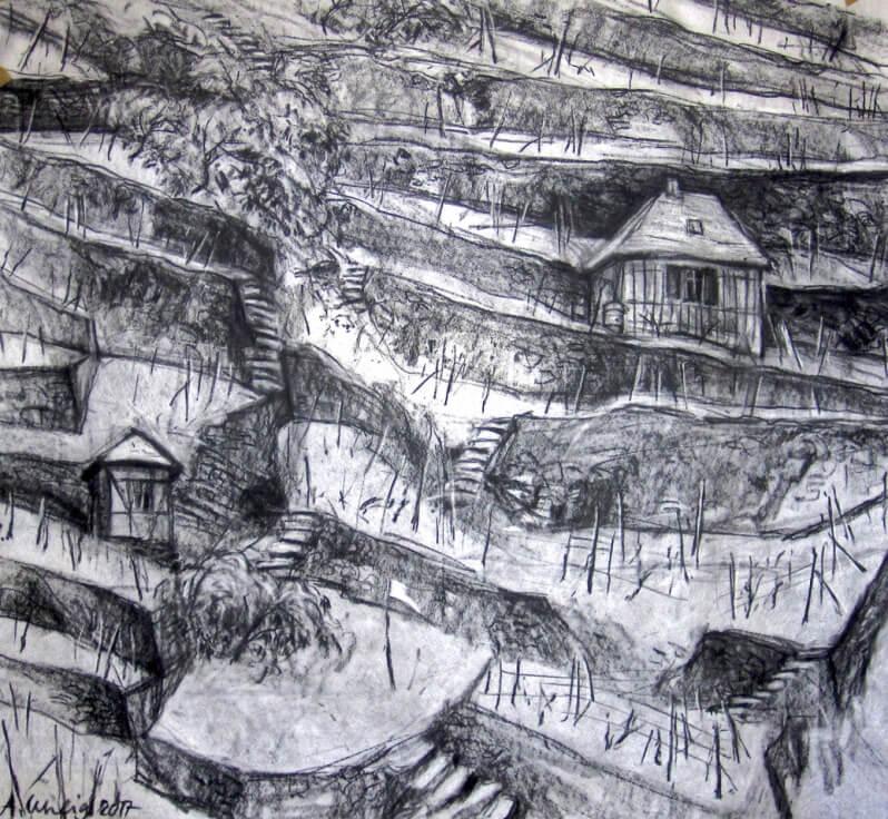 Kohlezeichnung eines Weinberges