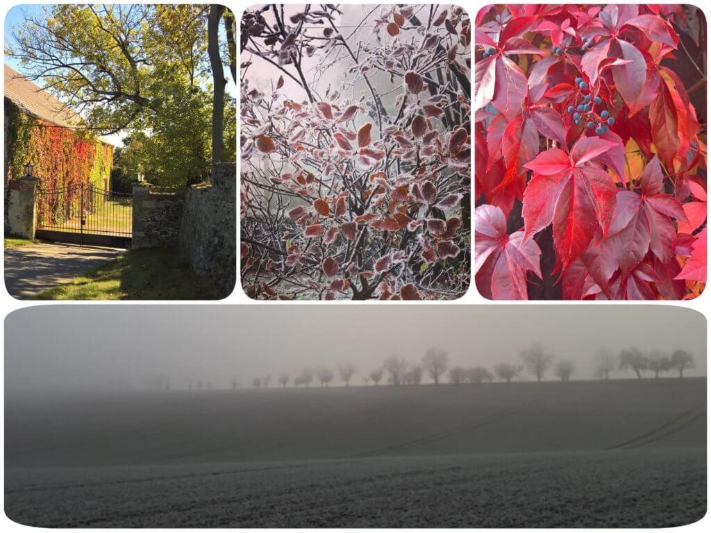 vier Landschaftsaufnahmen mit Herbst und Winterimpressionen